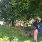 atelier cueillette plantes médicinales comestibles sauvages grenoble johanna jalbert naturopathe