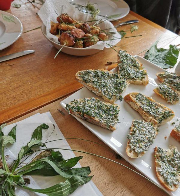Stage cuisine sauvage naturopathie johanna jalbert grenoble