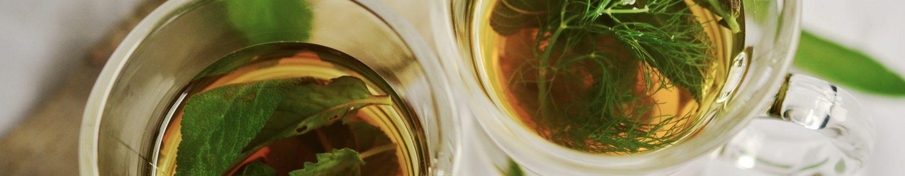 johanna-jalbert-naturopathe-grenoble-tea